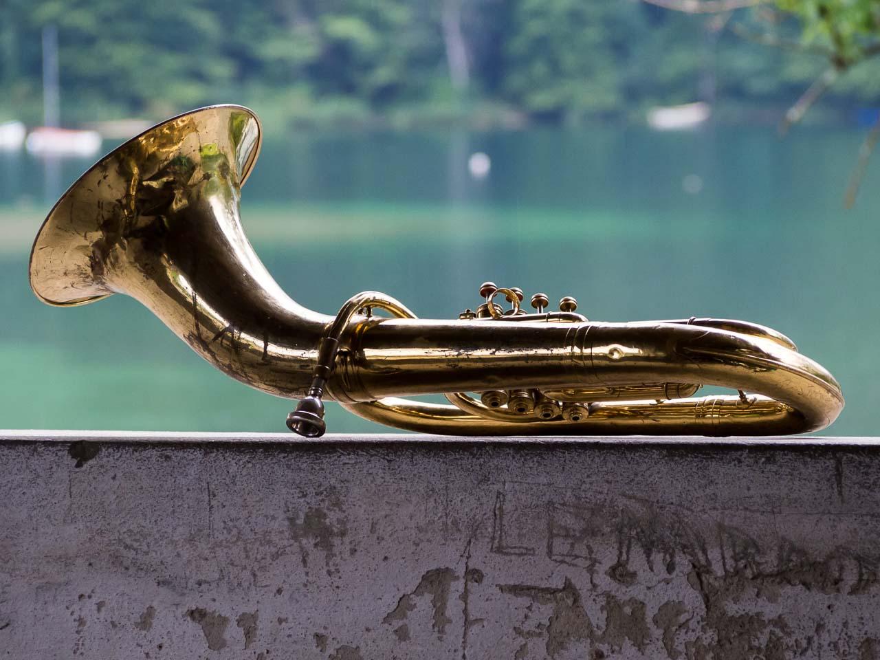resting tuba