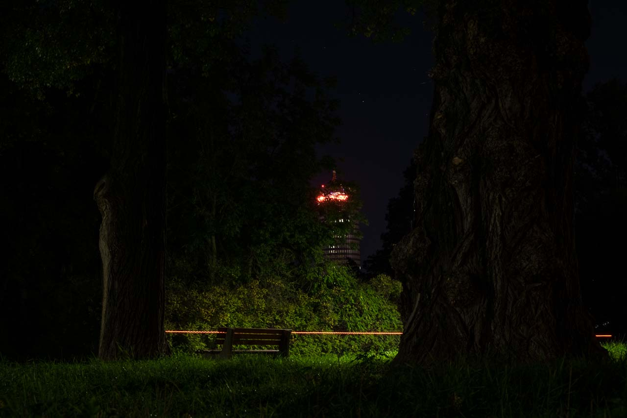 night in the park 2
