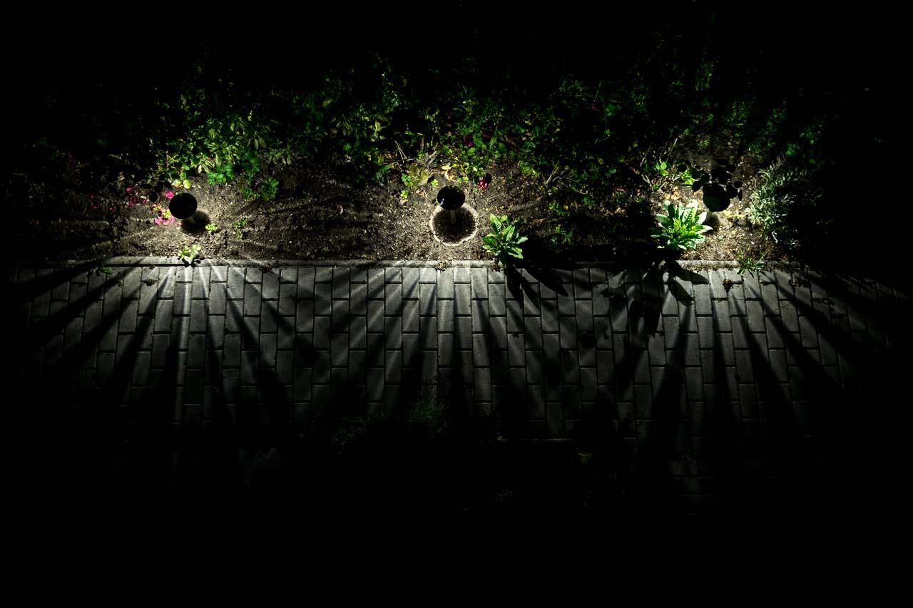 garden @ night